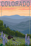 Colorado - Bear and Spring Flowers