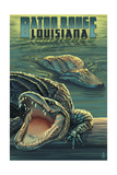 Baton Rouge  Louisiana - Alligator Scene
