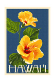 Hawaii - Yellow Hibiscus Flower