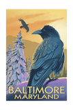 Baltimore  Maryland - Raven