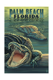 Palm Beach  Florida - Alligator Scene