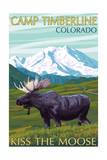 Camp Timberline  Colorado - Moose and Mountain