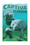 Captiva  Florida - Manatees