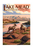 Lake Mead - National Recreation Area - Bighorn Sheep