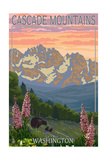 Cascade Mountains  Washington - Bears and Spring Flowers