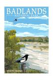 Badlands National Park  South Dakota - White River