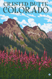Crested Butte  Colorado - Fireweed and Mountains