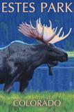 Estes Park  Colorado - Moose at Night