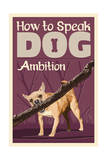 How to Speak Dog - Stick