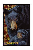 Tennessee - Black Bears Mosaic