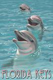 Florida Keys  Florida - Dolphin Trio