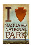 Saguaro National Park  Arizona - I Heart Saguaro