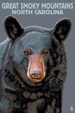 Great Smoky Mountains  North Carolina - Black Bear Up Close