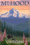 Mt Hood  Oregon - Bear Family and Spring Flowers
