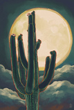 Cactus and Full Moon