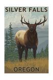 Silver Falls State Park  Oregon - Elk