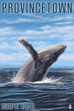 Provincetown  Massachusetts - Humback Whale