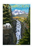 Washington - Mountain Goats and Falls