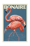 Bonaire  Dutch Caribbean - Flamingo