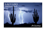 Saguaro National Park  Arizona - Lightning at Night