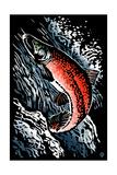 Sockeye Salmon - Scratchboard