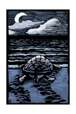 Sea Turtle on Beach - Scratchboard