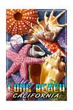 Long Beach  California - Shell Montage