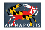 Maryland Flag Crab - Annapolis  Maryland