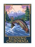 Redding  California - Fly Fisherman