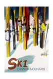 Cannon Mountain  New Hampshire - Colorful Skis