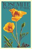 Yosemite National Park  California - Poppy
