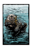 Sea Otter - Scratchboard