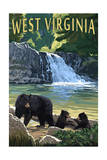 West Virginia - Waterfall and Bears