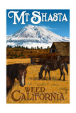 Mt Shasta - Weed  California - Horses and Mountain