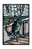 Blue Crab - Scratchboard