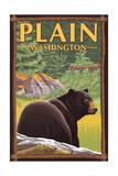 Plain  Washinton - Black Bear in Forest