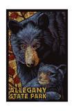 Allegany State Park  New York - Black Bear Mosaic