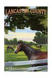 Lancaster County  Pennsylvania - Horse Pasture