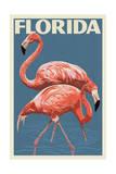Florida - Flamingo