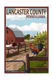 Lancaster County  Pennsylvania - Barnyard Scene