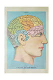 A Picture of Good Health - Vintage Cognitive Science Lithograph