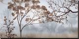 Early Morning Mist II