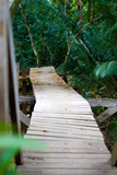 Wooden Bridge over River in Jungle Photo Poster Print