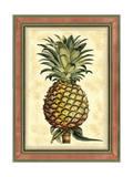 Splendeur d'ananas II Reproduction d'art par Vision Studio