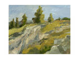Impasto Mountainside II