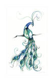 Aquarelle Peacock I
