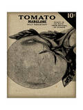 Vintage Seed Pack V