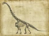 Brachiosaurus Study Reproduction d'art par Ethan Harper