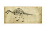 Spinosaurus Study Reproduction d'art par Ethan Harper