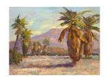 Desert Repose III